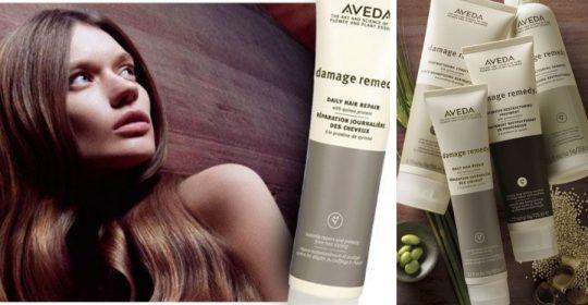 ταλαιπωρημένα μαλλιά damage remedy